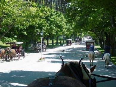 Pferdekutsche mitHybridantrieb